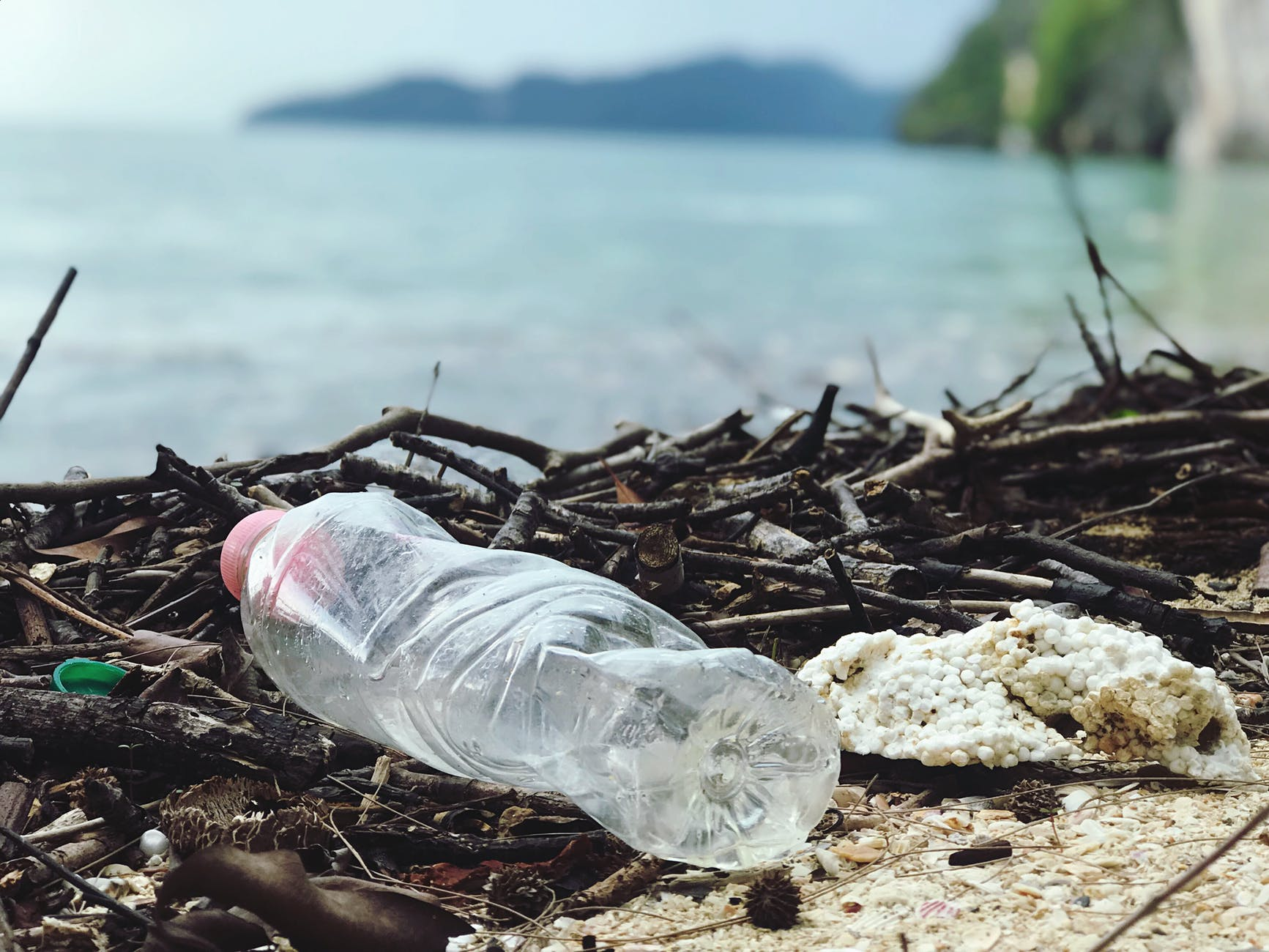 close up photo of plastic bottle