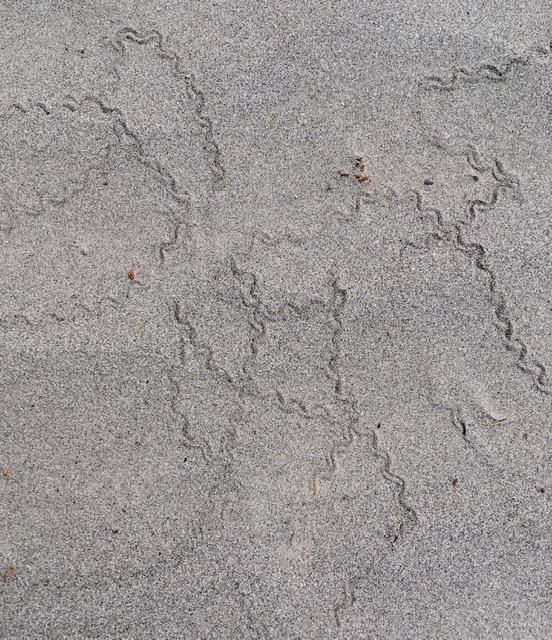 RW pic ll sand