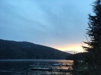 RW pic grey dawn